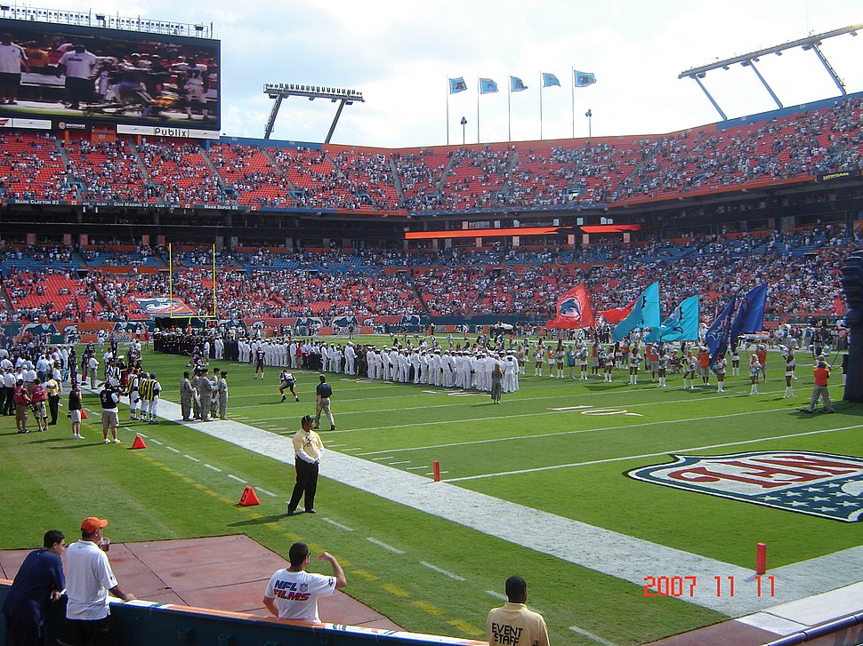 Dolphins 11-11-2007 001
