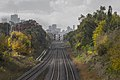 Downtown Toronto from Main St 15365449759.jpg