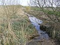 Drain at Barsham Marshes - geograph.org.uk - 978137.jpg