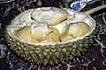 Durio zibethinus, the Durian - Flickr - Dick Culbert.jpg