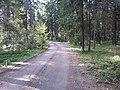 Dusetų sen., Lithuania - panoramio (103).jpg