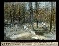 ETH-BIB-Waldbrand-Reste (24.VII.1945) St. Moritz, von Süden abwärts-Dia 247-14448.tif