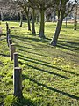 Early evening shadows cast by the posts at the edge of Flood Lane - geograph.org.uk - 693301.jpg