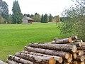 Eckarts - Baumstamme und Wiese (Logs and Meadows) - geo.hlipp.de - 43510.jpg