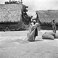 Een vrouw stort rijst uit op een droogvloer bij de pelmolen in Nickerie, Bestanddeelnr 252-5598.jpg