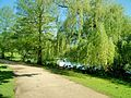 Eichenpark GA in HH-Harvestehude (1).jpg