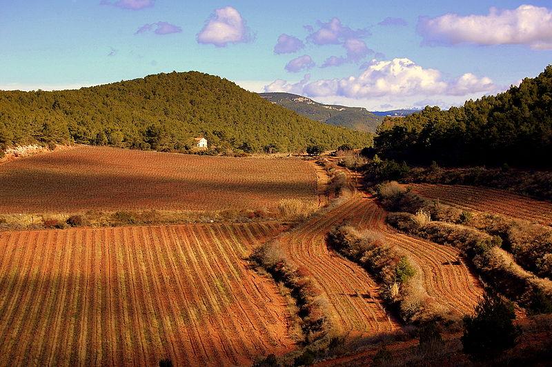 File:El Montmell-Marmellar - 35.jpg