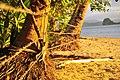 El Nido, Palawan, Philippines - panoramio (27).jpg