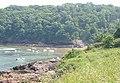 Elberry Cove - geograph.org.uk - 31250.jpg