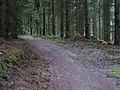 Erkensruhr valley to Gierberg 09.jpg