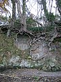 Erosion, Teign estuary - geograph.org.uk - 1188707.jpg