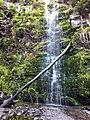 Erskine Falls 0492.jpg
