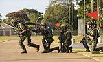 Exercício conjunto de enfrentamento ao terrorismo (27103070292).jpg