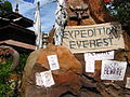 Expedition Everest 02.jpg