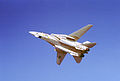 F-14A VF-1 Bottom View.JPEG