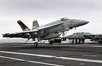Trägergestützte Flugzeuge
