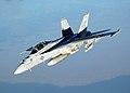 FA-18 Hornet VFA-41.jpg