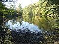 FFM Jacobiweiher Uferblick von S 1.jpg