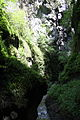 FR64 Gorges de Kakouetta20.JPG