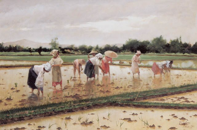Fabian de la Rosa, Women working in a rice field