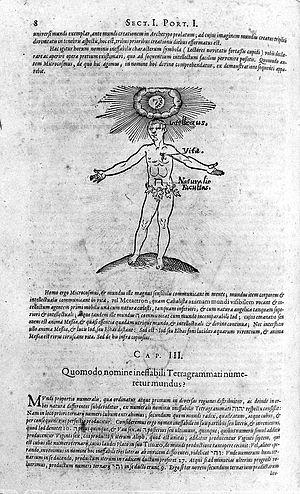"""Faculties of man, """"De praeternaturali utriusque..."""" Wellcome L0016215.jpg"""