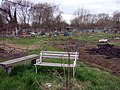 Fairacres allotments with seat - geograph.org.uk - 723854.jpg