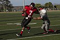 Falcons soar above Cannon Cockers 140918-M-RB277-001.jpg