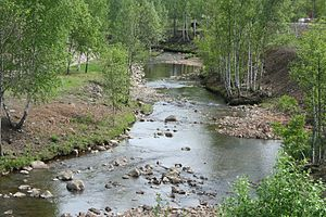 Falu River - Image: Faluån omedelbart söder om Kvarnbron