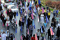 Family walking festival in Mashhad (2).jpg
