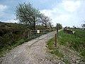 Farm road at Aghabehy - geograph.org.uk - 1631345.jpg