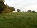 Farmland near Ludgershall - geograph.org.uk - 287200.jpg