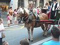 Festa Major de Gràcia 2011 - colles de Sant Medir - XIII cercavila de cultura popular - carrer Gran P1330055.jpg