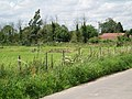 Field Farm on Haxey Carr - geograph.org.uk - 494309.jpg