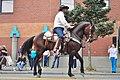 Fiestas Patrias Parade, South Park, Seattle, 2017 - 269 - horses.jpg