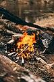 Fire (Unsplash hUFcg942g0U).jpg