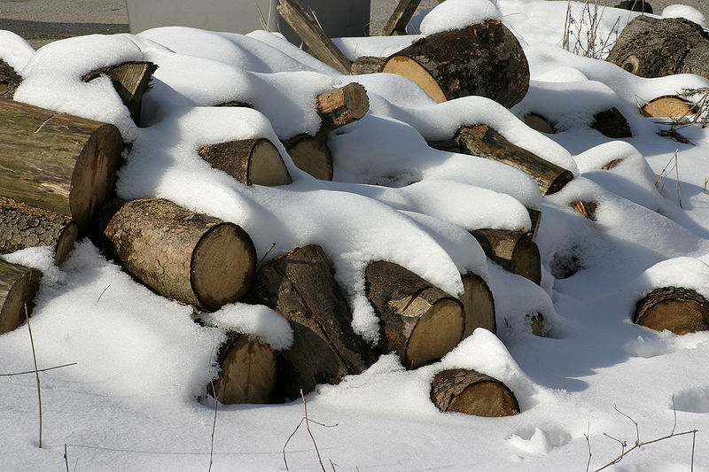 File:Firewood in the snow.jpg