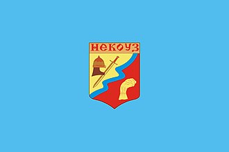 Nekouzsky District - Image: Flag of Nekouzsky District of Yaroslavl oblast