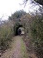 Fleam dyke near Balsham, Cambridgeshire. - panoramio.jpg