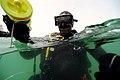 Flickr - Official U.S. Navy Imagery - A Navy diver conducts dive operations off the coast of Bahrain..jpg