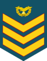 Flight Sgt of RMAF.png