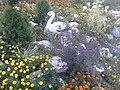 Flowers in Dushanbe 01.jpg