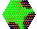 File:Flux-Based-Transport-Enhancement-as-a-Plausible-Unifying-Mechanism-for-Auxin-Transport-in-Meristem-pcbi.1000207.s006.ogv