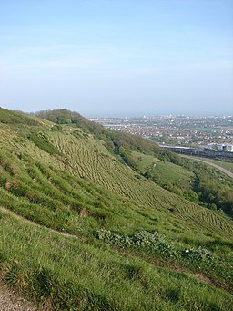Folkestone To Etchinghill Escarpment - geograph.org.uk - 415311