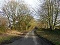 Folly Lane - looking east towards Warminster - geograph.org.uk - 1120986.jpg