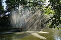 Fontanna w Parku Centralnym w Brzegu..jpg