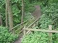 Footbridge in Ercall Nature Reserve - geograph.org.uk - 809760.jpg