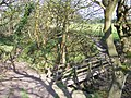 Footbridge on path from Ashurst Beacon - geograph.org.uk - 1262149.jpg