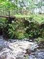 Footbridge over Black Brook, close up - geograph.org.uk - 317661.jpg