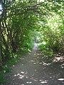 Footpath - Potternewton Lane - geograph.org.uk - 1331771.jpg