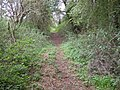 Footpath following old canal bed - geograph.org.uk - 259165.jpg